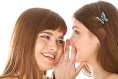 Duas amigas novas felizes que dizem segredos fotos de stock