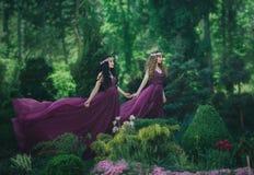 Duas amigas, um louro e uma morena, estão guardando as mãos Jardim de florescência do fundo As princesas são vestidas no purp lux fotos de stock royalty free