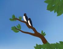 Duas andorinhas de celeiro ilustração royalty free
