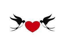 Duas andorinhas enamorado ilustração stock