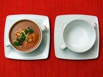 Duas bacias na tela vermelha Imagem de Stock Royalty Free