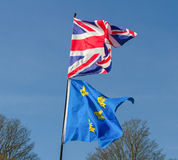 Duas bandeiras naturais imagens de stock