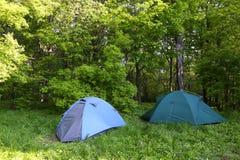 Duas barracas azuis na floresta verde Foto de Stock Royalty Free