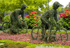 Duas bicicletas florais Imagens de Stock