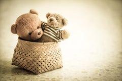 Duas bonecas do urso Imagens de Stock Royalty Free