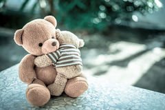 Duas bonecas do urso Imagens de Stock