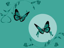 Duas borboletas Foto de Stock Royalty Free