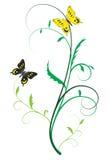 Duas borboletas nas plantas Fotos de Stock Royalty Free