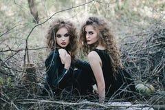 Duas bruxas do vintage recolheram a véspera de Dia das Bruxas Imagens de Stock Royalty Free