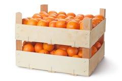 Duas caixas de varejo de tangerinas maduras imagens de stock