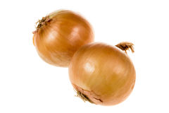 Duas cebolas isoladas Imagem de Stock