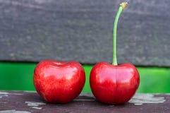 Duas cerejas doces frescas em um fundo do banco de madeira Cerejas maduras frescas 2 cerejas no ar livre no fundo Imagens de Stock