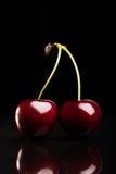 Duas cerejas frescas suculentas no fundo preto imagens de stock royalty free