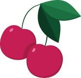 Duas cerejas maduras em um ramo Imagem de Stock Royalty Free