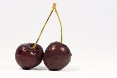 Duas cerejas no branco Fotos de Stock