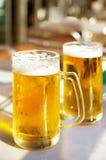 Duas cervejas Fotos de Stock Royalty Free