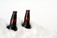 Duas cervejas na neve Imagem de Stock