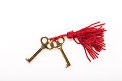 Duas chaves de esqueleto Foto de Stock