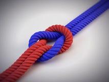 Duas cordas diferentes com nó Fotos de Stock Royalty Free