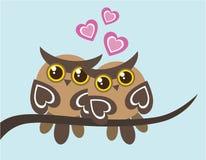 Duas corujas no amor Imagens de Stock