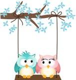 Duas corujas no amor em um balanço Fotografia de Stock Royalty Free