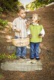 Duas crianças com cesta que coletam cones do pinho Fotos de Stock