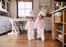 Duas crianças da criança com máscaras do unicórnio que andam dentro em casa imagem de stock