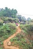 Duas crianças de SaPa em Vietname que andam acima do monte seguem sua mamã Fotografia de Stock Royalty Free