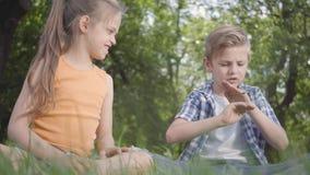 Duas crianças engraçadas que sentam-se na grama no jogo do parque O menino que joga com um erro, menina que tenta tomá-lo Um par vídeos de arquivo