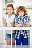 Duas crianças felizes que guardam metades do quivi Fotos de Stock