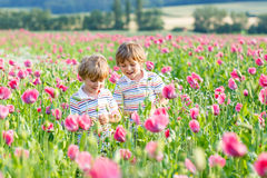 Duas crianças louras pequenas felizes no campo de florescência da papoila Fotos de Stock
