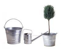 Duas cubetas uma lata molhando para plantar Imagem de Stock Royalty Free