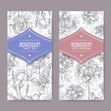 Duas etiquetas com esboço da íris doce e do gerânio cor-de-rosa Fotografia de Stock Royalty Free