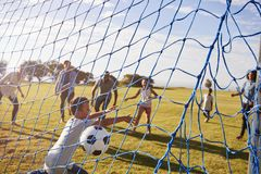 Duas famílias que jogam o futebol no parque, marcando um objetivo fotos de stock