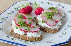 Duas fatias de pão inteiro delicioso com requeijão e rabanete Foto de Stock Royalty Free