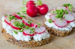 Duas fatias de pão inteiro delicioso com requeijão e rabanete Fotografia de Stock Royalty Free