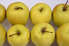 Duas fileiras do close-up amarelo fresco das maçãs no fundo branco Foto de Stock Royalty Free