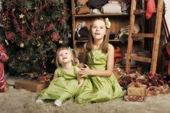 Duas filhas em um vestido verde Fotos de Stock