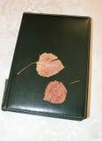 Duas folhas em um bloco de notas Fotos de Stock Royalty Free