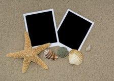 Duas fotos na areia da praia com shell e estrela do mar imagem de stock royalty free