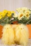 Duas galinhas em um fundo das flores, imagem de stock