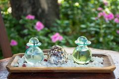 Duas garrafas de vidro com óleos aromáticos fotografia de stock