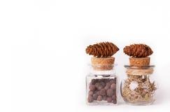 Duas garrafas de vidro e dois cones do pinho em um fundo branco Ervas e poções naturais Copie o espaço imagens de stock