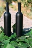 Duas garrafas de vinho pretas, suporte no verde, folhas da uva, na estrada na vila o jardim traseiro e a casa são vistos naughty foto de stock royalty free
