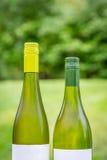 Duas garrafas de vinho verdes completas fora próximos um do outro Fotografia de Stock Royalty Free
