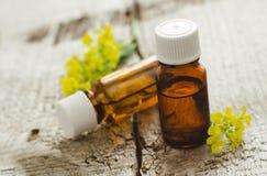 Duas garrafas do aroma (essencial) cosmético natural lubrificam Fotografia de Stock