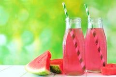 Duas garrafas do suco da melancia com fundo exterior verde foto de stock royalty free