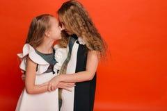 Duas irmãs em vestidos estilizados bonitos em um fundo vermelho dentro Fotografia de Stock Royalty Free