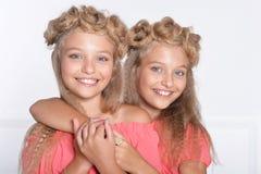 Duas irmãs gêmeas adoráveis em vestidos cor-de-rosa bonitos fotografia de stock