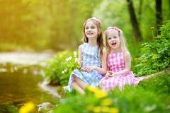 Duas irmãs mais nova adoráveis que jogam por um rio no parque ensolarado Imagens de Stock Royalty Free